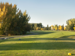 Tree-lined fairway at Lewis Estates Golf Course