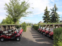 Power carts at Lewis Estates Golf Course